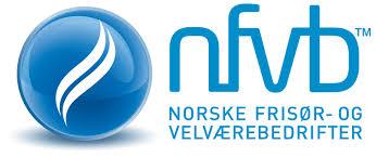 logo nfvb